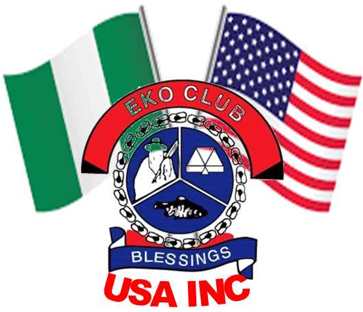 USA INC LOGO 002
